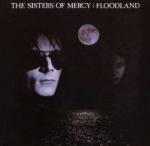 SistersFloodland